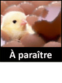 A_paraitre_cat
